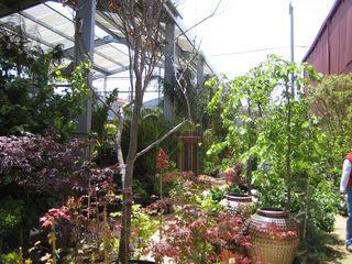 Flora Grubb Gardens 003